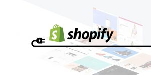 The Shopify eCommerce Application Systematic Review for 2020