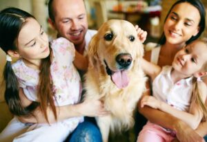 dog care services